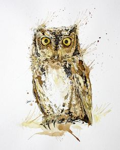 Owl coffee painting - Artwork by Philipp Grein.