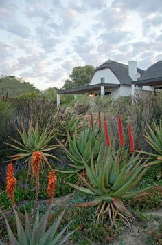Bushmans Kloof in the Cederberg, South Africa