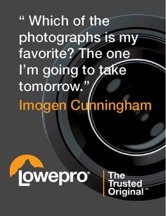 Quote from photographer