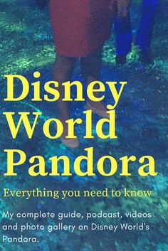 365 Best Disney World Resorts images in 2019 | Disney world