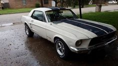 Ford : Mustang Coupe 1967