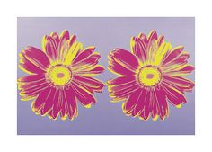 Andy Warhol Daisy C 1982 Double Pink print for sale. Shop for Andy Warhol Daisy C 1982 Double Pink painting and frame at discount price, ships in 24 hours. Andy Warhol Pop Art, Andy Warhol Pictures, Daisy Painting, Wall Art For Sale, Canvas Prints, Art Prints, Find Art, Framed Artwork, Giclee Print