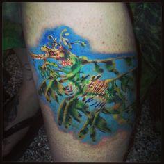 Leafy sea dragon tattoo by Carolyn Cadaver