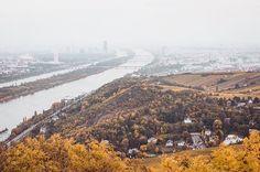 ✨🍂 • • • • • #autumn #colors #hill #art #mountain #fog #tones #agameoftones #bestoftheday #landscape #vienna #austria #like4like #follow4follow #photography #photographer #_allshots #l4l #f4f #followme #instalike#tbt #instagood #urban #urbex #explore #create #inspire  #trytogetbetter #youarenotalone