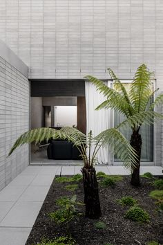 Architecture studio Ritz&Ghougassian has extended a traditional Melbourne house, using a minimal material palette that sees blockwork walls left exposed both inside and out. Tree ferns and minimalist garden design Australian Interior Design, Interior Design Awards, Australian Architecture, Architecture Design, Japanese Interior Design, Minimalist Architecture, Architecture Interiors, Australian Homes, Landscape Architecture