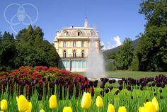 Riaprono i giardini di Villa Taranto con la settimana del Tulipano