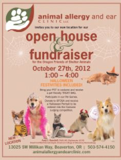 open house halloween party fundraiser animal allergy and ear clinic - Halloween Fundraiser Ideas