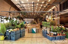 [식물 디자인] 식물을 잘 살리는 디자인 스튜디오
