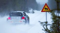 Älgtest | Rally Sweden | WRC 2016: VW RALLYTHEWORLD // Rally Sweden: We are quite amoosed.