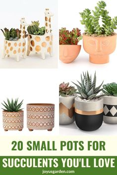 Succulents grow wonderfully in small pots. These small pots for succulents all in 1 easy to shop from place will make your shopping easier. You'll find cute succulent pots, cool succulent pots, small ceramic pots for succulents, & lots of decorative pots for succulents. #succulentpots #potsforsucculentsindoors