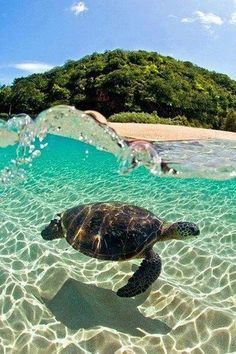 16 Ideas Photography Arte Water Pictures For 2019 Sea Photography, Winter Photography, Travel Photography, Photography Ideas, Maui, Oahu Hawaii, Nature Quotes Adventure, House In Nature, Water Pictures