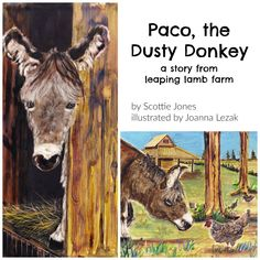 Paco, the Dusty Donkey - a story from Leaping Lamb Farm