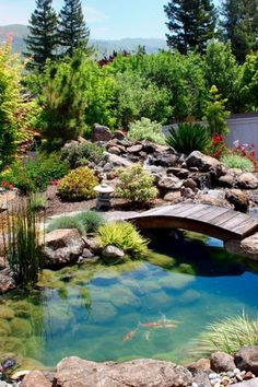 Inspiration: Koi Pond Design Ideas For A Rich And Tranquil Home Landscape! Natural Inspiration: Koi Pond Design Ideas For A Rich And Tranquil Home Landscape!Natural Inspiration: Koi Pond Design Ideas For A Rich And Tranquil Home Landscape! Koi Pond Design, Landscape Design, Landscape Bricks, Landscape Steps, Landscape Plans, Fish Pond Gardens, Backyard Water Feature, Backyard Ponds, Garden Ponds