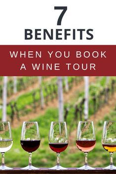 Discover the 7 reasons why you can't miss out on booking a wine tour on your next trip to Italy. Tour Around The World, Travel Around The World, Italy Travel Tips, Travel Europe, Travel Destinations, Travel Advice, Travel Ideas, Italy Tours, European Travel