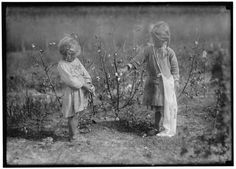 Life on a Cotton Farm in 1916 - Old Photo Archive