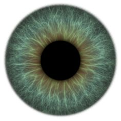 iris texture, png at 150ppi on transparent