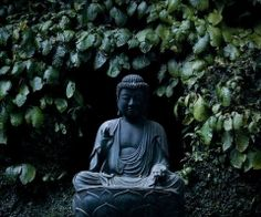 My Buddha graces my deck, where I sit and observe life in forms ... grass, flowers, bees, birds ....