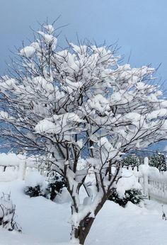 Зима январь