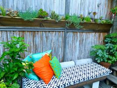upper haight container garden, san francisco ca     custom designed/built living wall and bench
