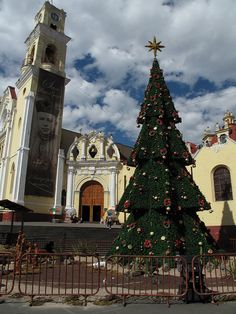 Christmas Tree by the Cathedral - Xalapa, Veracruz, Mexico