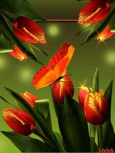 Очаровательные тюльпаны