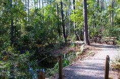 Jacksonville Arboretum & Gardens Nature Walk http://learnyourrights.com/
