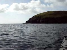 Sea Kayaking with dolphins in Ardmore Bay