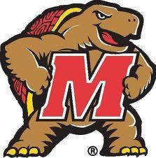 93 Best College Mascots Big Ten Images Illinois Iowa College