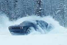 Dodge Challenger Muscle Car: 176+ trends Collections http://pistoncars.com/dodge-challenger-muscle-car-176-collections-1537