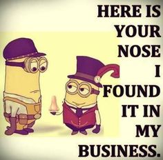 Best new funny Despicable Me minions quotes 023