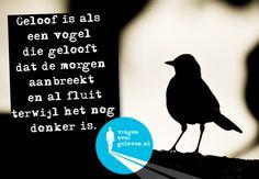 Geloof is als een vogel die gelooft dat de morgen aanbreekt en al fluit terwijl het nog donker is.