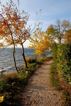 The Shore Path in Lake Geneva - good place to start, library 918 w main st 53147