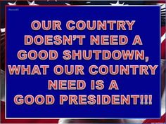 OUR COUNTRY DOESN'T NEED A GOOD SHUTDOWN....