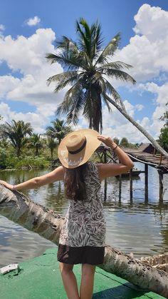 Ciénaga de Zapata - Cuba © Viaje Comigo Cuba, Panama Hat, Crocodiles, Boating, Statue Of, Traveling, Panama