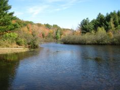 Fall reflections at Kenneth L Wilson Campground - NYSDEC Campgrounds