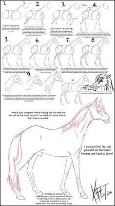 Step by step, how to draw horses.