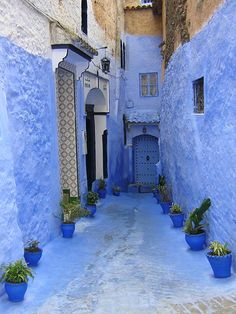 Chefchaouen, the Blue City, Morocco Mekka, Blue City, My Favorite Color, Shades Of Blue, Places To See, Beautiful Places, Beautiful Pictures, Around The Worlds, Blue And White
