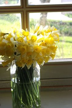 a lot of sunshine in a jar<<---my favorite flower! YELLOW