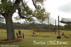 Barton Hill Farms ~