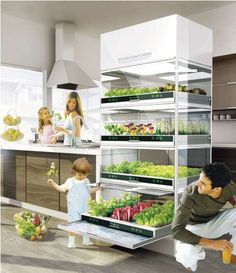 Sink-Grown Gardens - The Kitchen Nano Garden Makes Growing Your Own Veggies Effortless