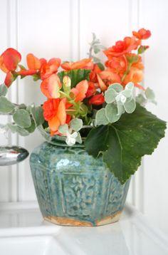 Vintage green Chinese ginger jar with orange begonias.