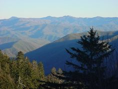 Great Smokey Mountains of East Tennessee. would love to camp here!!!