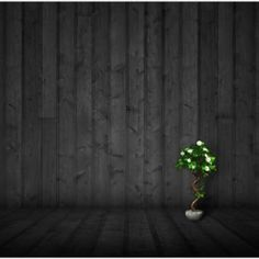 dark theme wallpapers ipad wood background iphone pc 1080p combo customization lonely desktop wall blooming pot tree plant imore forums