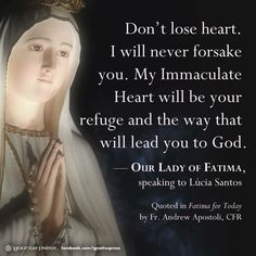 I will never forsake you. My immaculate heart will be your refuge and the way that will lead you to God. Our Lady of Fatima speaking to Lucia Santos Catholic Quotes, Catholic Prayers, Religious Quotes, Catholic Beliefs, Novena Prayers, Christianity Quotes, Catholic Sacraments, Praying The Rosary, Holy Rosary