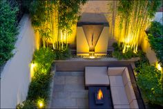 The planting design in this London courtyard uses Japanese plants exclusively. The Narihira bamboo provides a very architectural backdrop either side of the waterfall growing very straight canes. This is contrasted by the graceful Japanese maples which form a triangular design along the raised beds. An evergreen carpet of ferns and grasses ties the composition together in a contemporary courtyard.