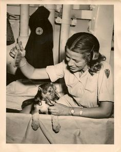 American Red Cross --- look at the glimpse in that eye!