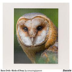 Barn Owls -Birds of Prey. Jigsaw Puzzle