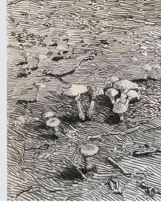 Per Adolfsen artist (@peradolfsen_artist) • Instagram-foto's en -video's Forest Floor, Landscape Drawings, Life Drawing, City Photo, Pencil, Sketches, Contemporary, Black And White, Abstract