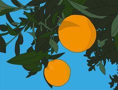 www.tapaforats.com naranjas