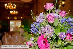 New Pixels Photography | Forty Hall, Enfield-15